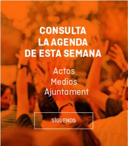 agenda copia